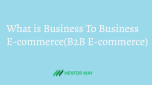 What is Business To Business E-commerce(B2B E-commerce)