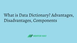 What is Data Dictionary? Advantages, Disadvantages, Components