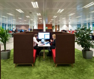 Biophilic Design For Performance & Productivity
